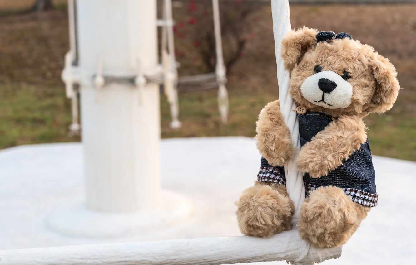 Photo wallpaper toy, bear, girl, bear, teddy, lonely, cute, lonely