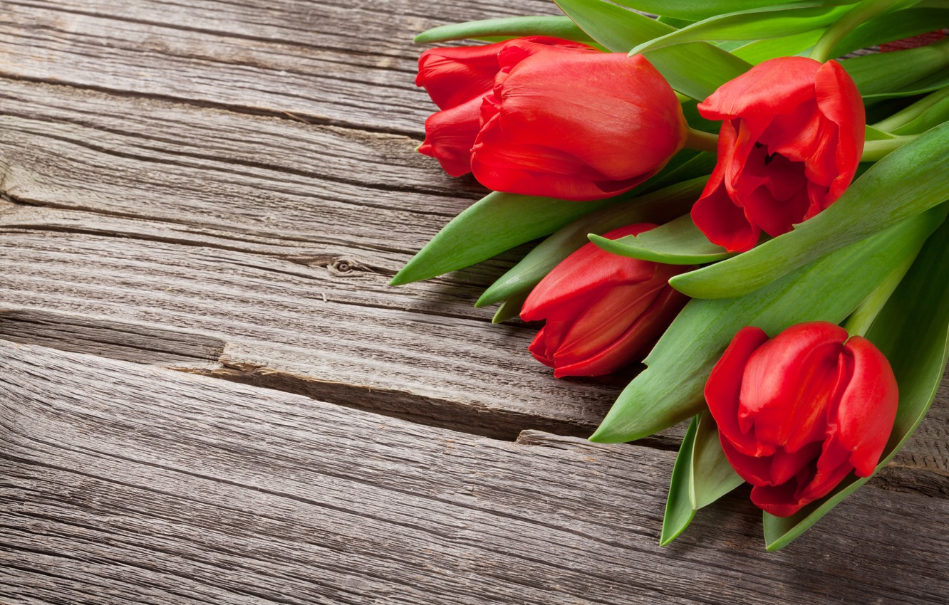 Photo wallpaper flowers, bouquet, tulips, red, love, wood, flowers, romantic, tulips