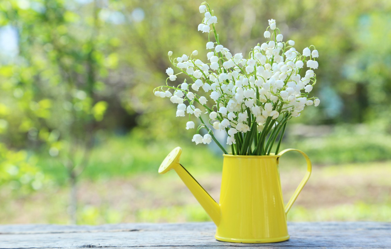 Wallpaper Flowers Bouquet Spring Lake Lilies Of The Valley