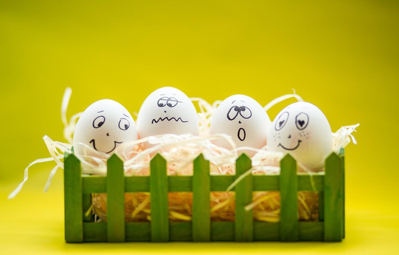 Photo wallpaper eggs, smile, Easter, smile, spring, Easter, eggs, funny, decoration, Happy, tender