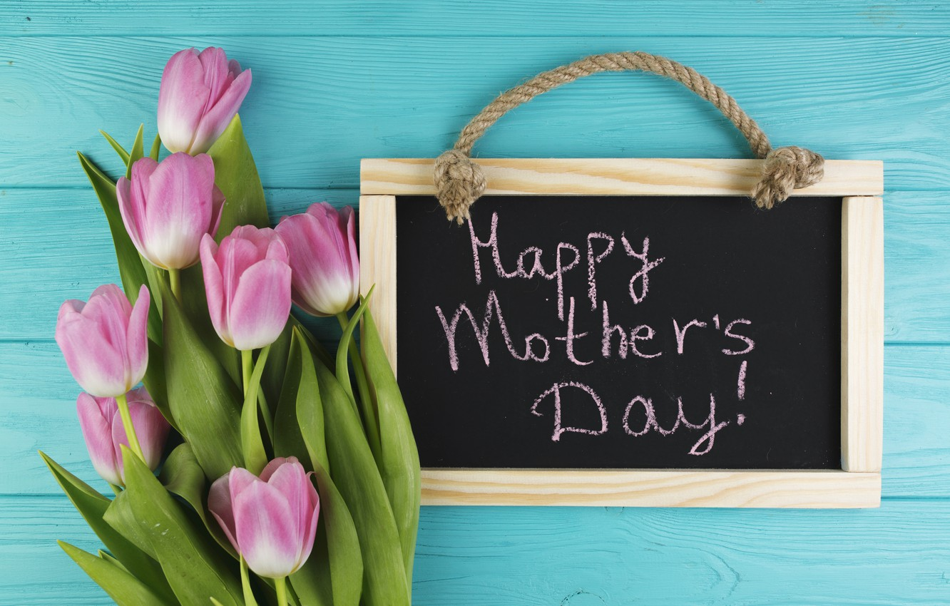 Photo wallpaper flowers, tulips, Board, pink, fresh, wood, pink, flowers, tulips, spring, tender, mother's Day