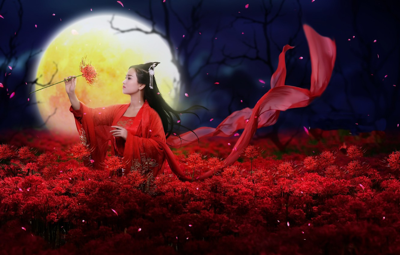 Photo wallpaper girl, flowers, style, the moon