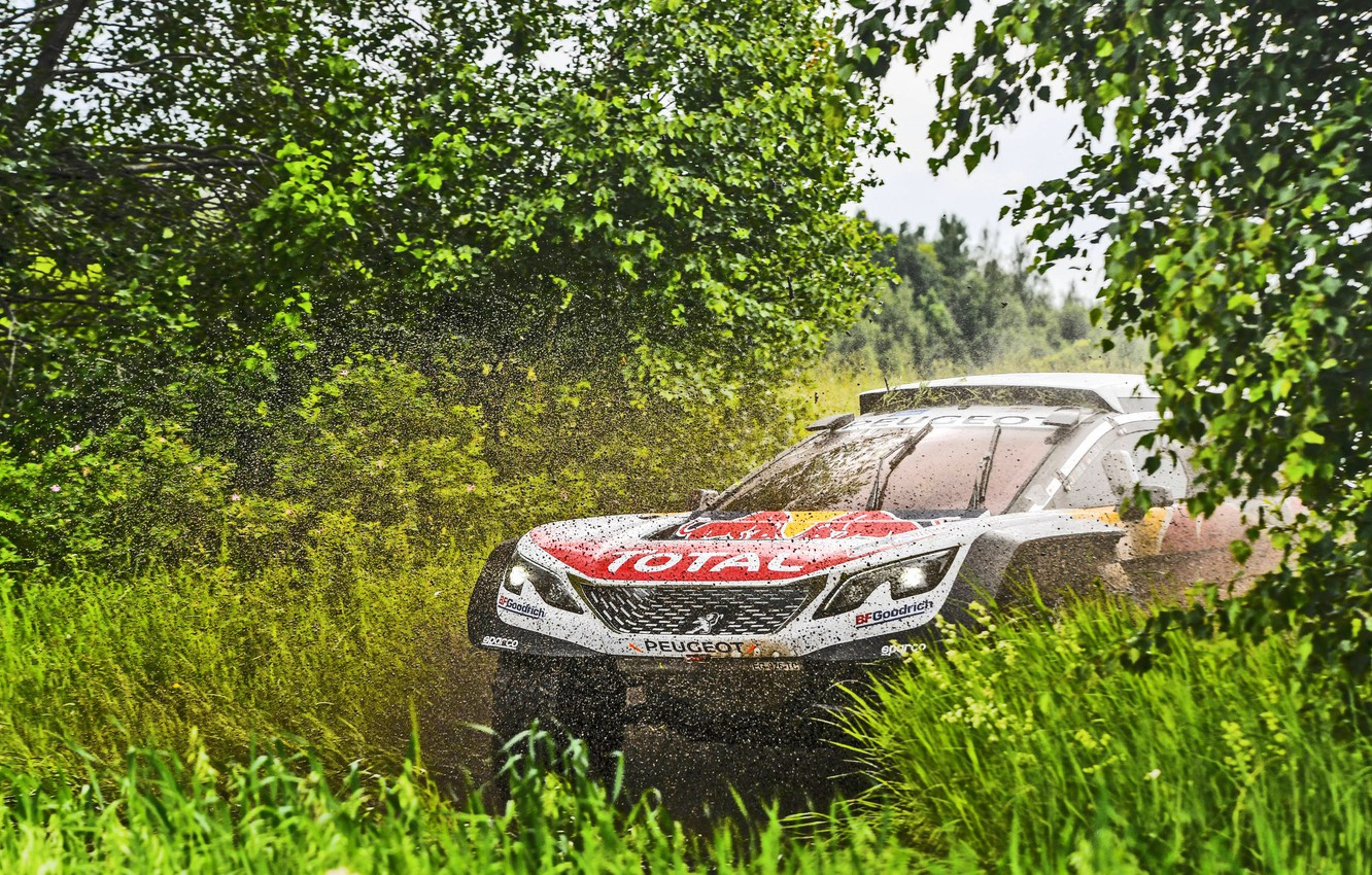 Photo wallpaper Water, Nature, Trees, Sport, Speed, Dirt, Peugeot, Squirt, Rally, Rally, Overcast, DKR, 2017, 3008, Silk …