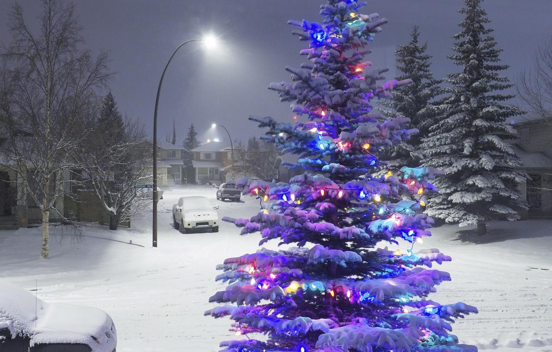 Photo wallpaper winter, snow, lights, tree, new year, garland