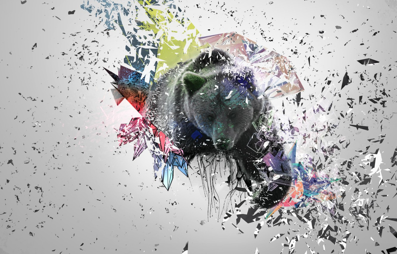 Photo wallpaper fragments, abstraction, beautiful, Bear