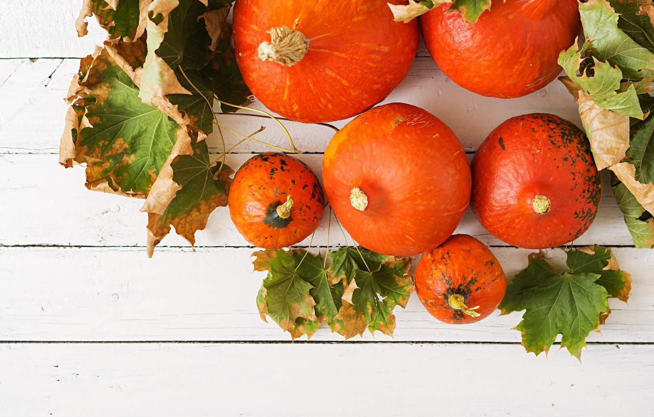 Photo wallpaper leaves, Pumpkin, the gifts of autumn