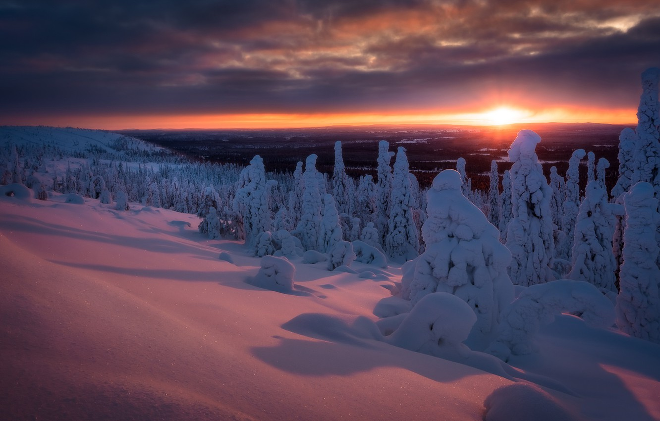 Photo wallpaper winter, forest, snow, trees, sunset, the snow, Finland