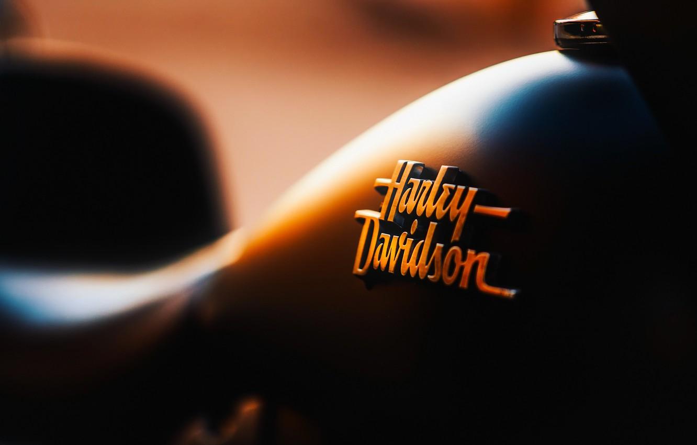 Photo wallpaper engine, motorcycle, Davidson, Harley, motorcycle, label, motor, nameplate