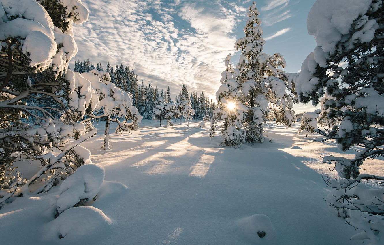 Photo wallpaper rays, landscape, snow, winter, nature, trees, shadows, ate, Norway, the sun, the sky, clouds