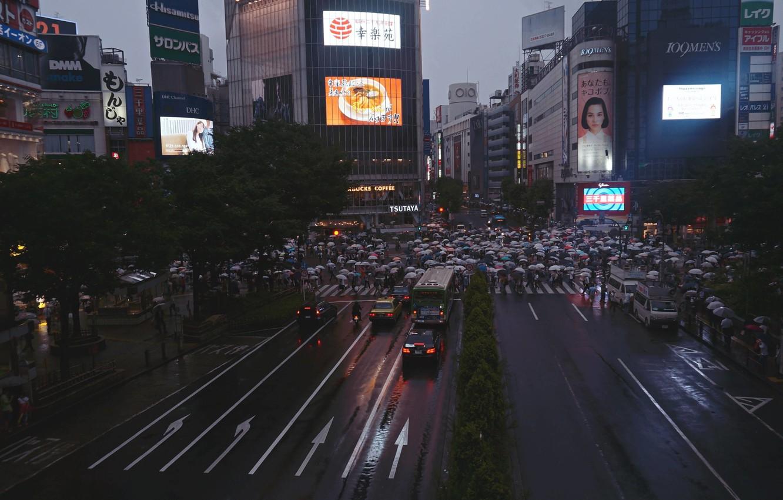 Photo wallpaper people, rain, the crowd, Japan, umbrellas, the prepared