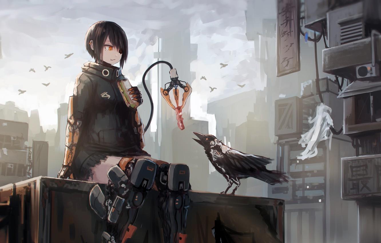 Wallpaper City Future Girl Fantasy Robot Android Bird