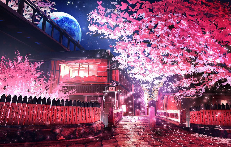 Photo wallpaper trees, night, the moon, street, spring, smile