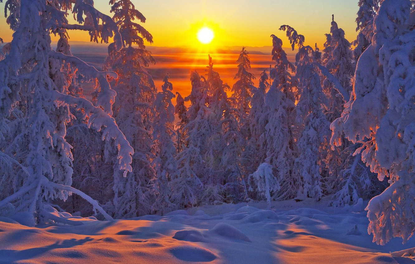Photo wallpaper winter, forest, snow, trees, sunset, ate, Russia, Yakutia, Vladimir Ryabkov, Oymyakonsky district
