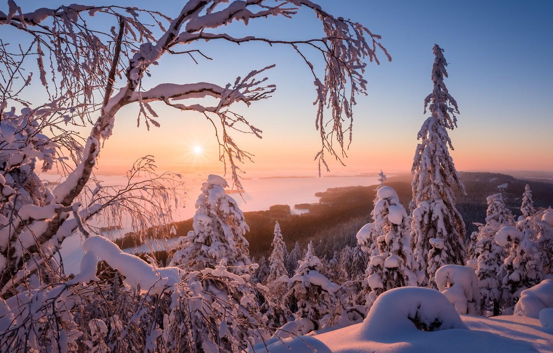 Photo wallpaper winter, snow, landscape, nature, beauty, Finland