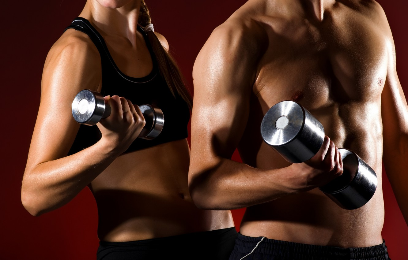 Photo wallpaper woman, muscle, man, couple, together, fitness, gym, healthy, health, fit, weight lifting, partners, dumbell, man …