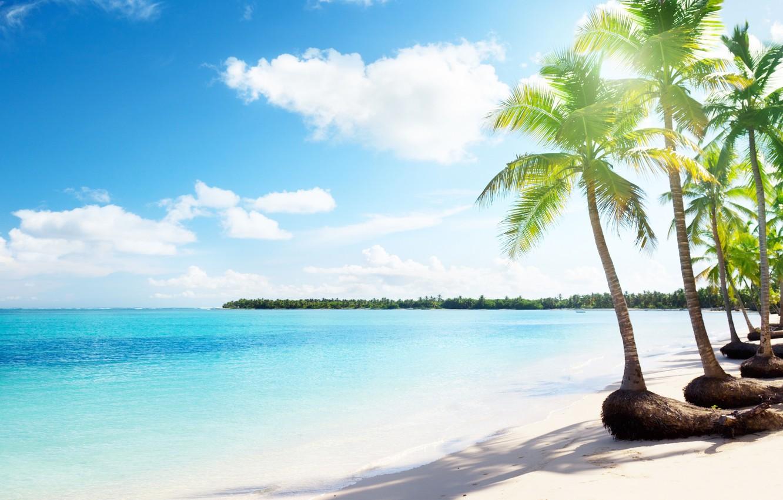Photo wallpaper sea, clouds, tropics, palm trees