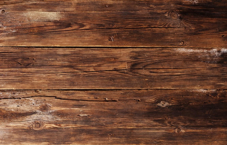 Photo wallpaper background, tree, Board