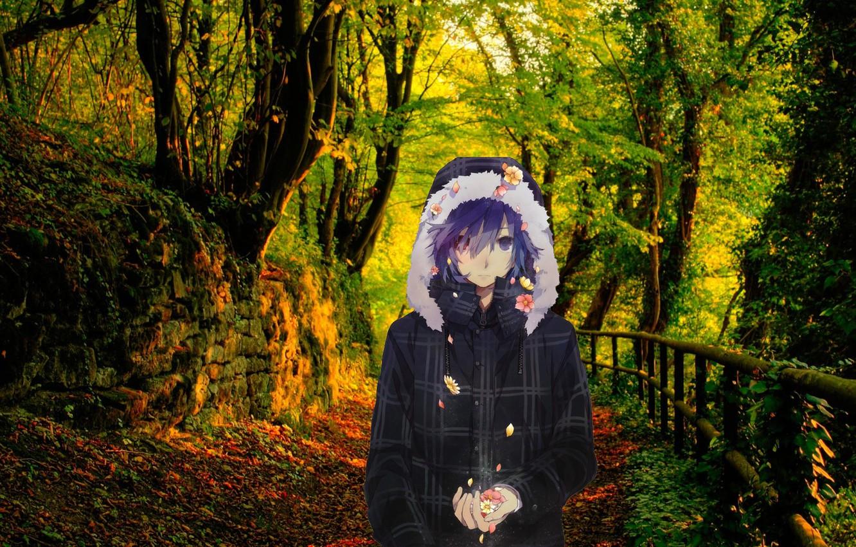Photo wallpaper Nature, guy, anime art, autumn in the forest, anime guy, anime kun