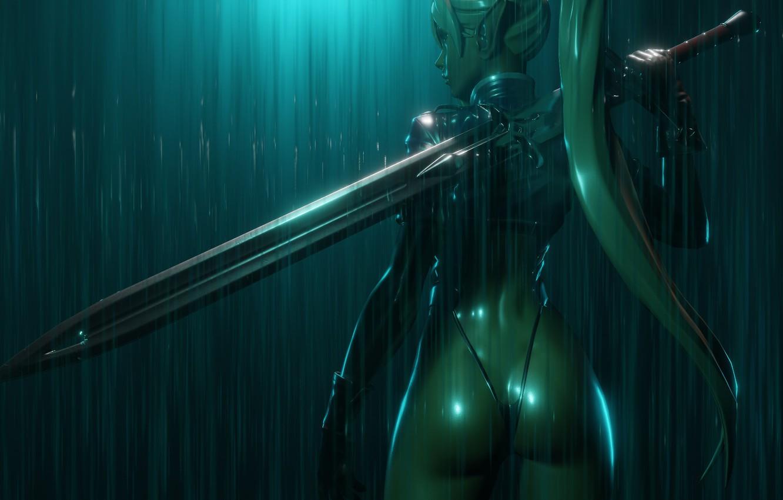 Photo wallpaper ass, rain, back, sword, fantasy, profile, elf, ears, the shower, weapons