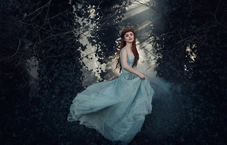Photo wallpaper forest, girl, butterfly, dress, Princess, Bird Man