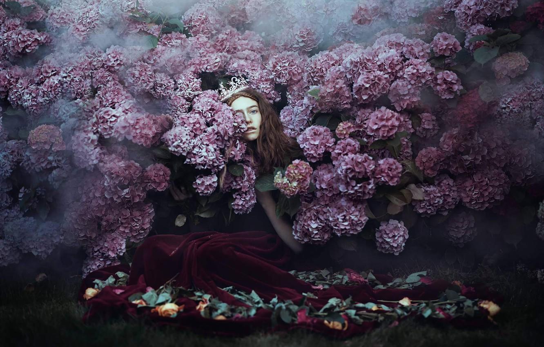 Photo wallpaper girl, Princess, hydrangea, Bella Kotak, A little lost, a little found
