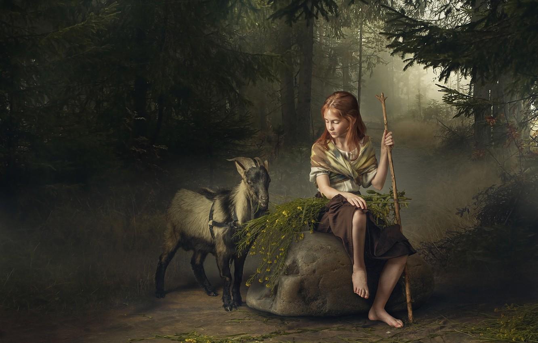 Photo wallpaper forest, stone, girl, goat