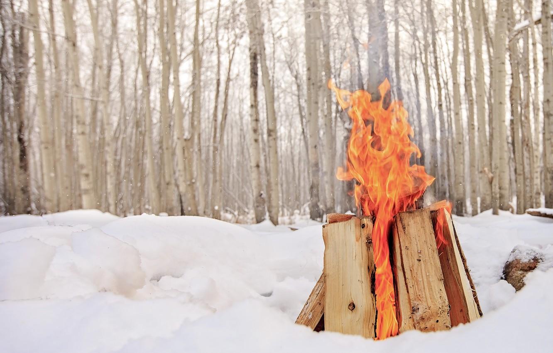Photo wallpaper winter, snow, fire, the fire