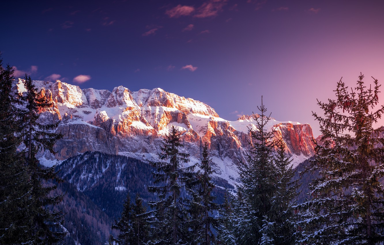 Photo wallpaper winter, forest, snow, trees, nature, Italy, The Dolomites