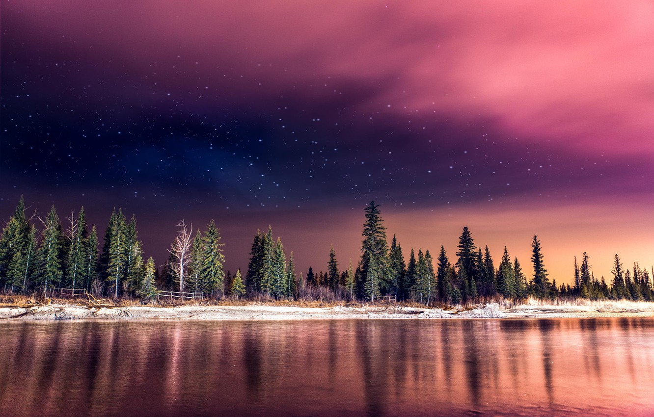 Photo wallpaper forest, the sky, stars, light, night, nature, river