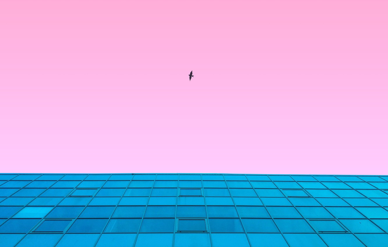 Photo wallpaper the sky, flight, style, background, pink, bird, the building, view