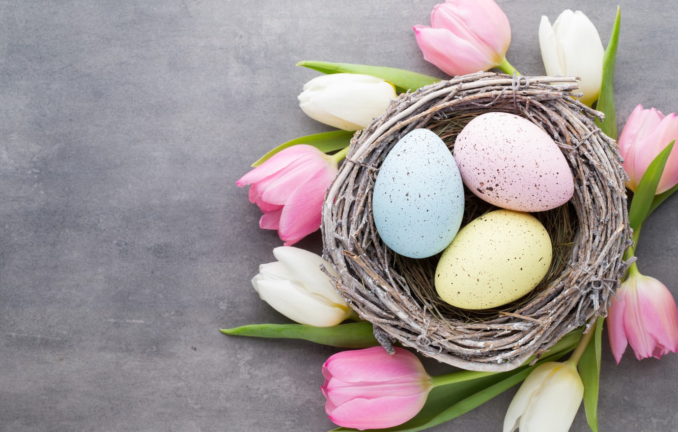 Photo wallpaper flowers, spring, Easter, tulips, wood, flowers, tulips, spring, Easter, eggs, decoration, Happy, the painted eggs