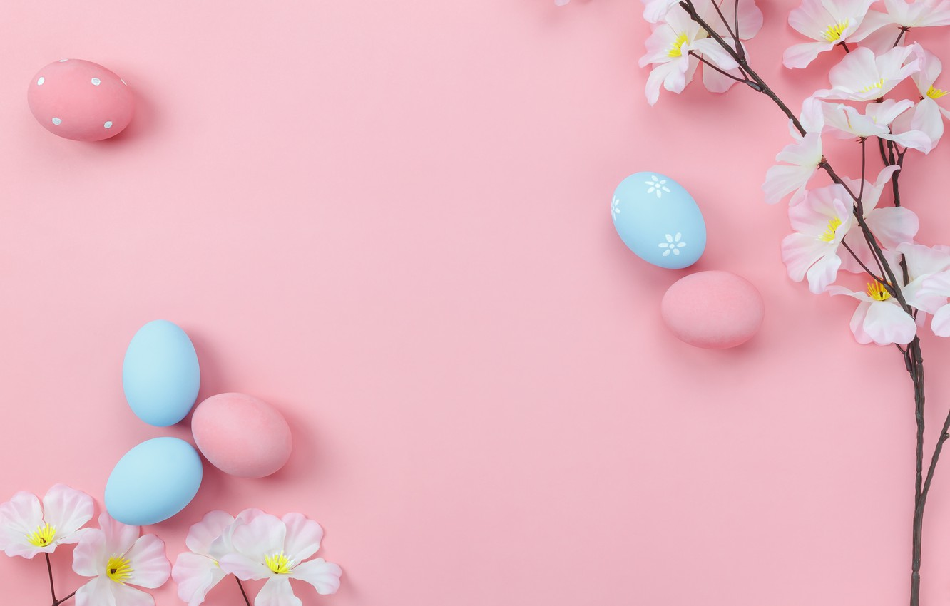 Photo wallpaper flowers, background, pink, eggs, spring, Easter, wood, pink, blossom, flowers, spring, Easter, eggs, decoration, Happy, …