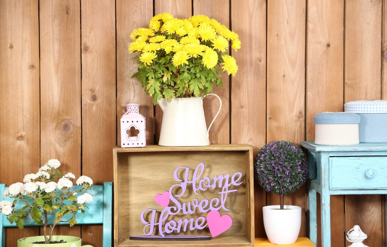 Photo wallpaper flowers, colors, colorful, box, vase, design, chrysanthemum, flowers, interior, shelves, home, decoration, lantern
