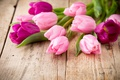 Picture beautiful, fresh, wood, pink tulips, pink, tulips, bouquet, flowers, flowers