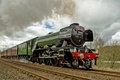 Picture train, the engine, railroad, Flying Scotsman