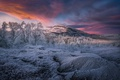 Picture forest, trees, nature, frost, winter, mountains, the sky