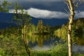 Picture forest, river, clouds, Washington State, Washington, Columbia River, trees, reflection, the Columbia river