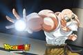 Picture game, anime, man, by nairon kr, master, kanji, star, Dragon Ball Super, shounen, japanese, martial ...