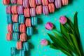 Picture pink, macaroon, macaroon, sweet, macaron, pink, tulips, tulips, dessert