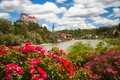 Picture river, Bayern, Burghausen Castle, Burghausen, roses, castle, Salzach river, Burghausen, Burghausen Castle, the bushes, Germany, ...