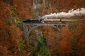 Picture autumn, train, smoke, the engine, red, mountains, bridge, couples