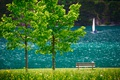 Picture trees, landscape, lake, boat, Austria, sail, bench, Tyrol