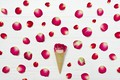 Picture rose, flower, Horn, petals