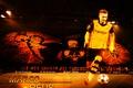 Picture wallpaper, Marco Reus, player, sport, football, Signal Iduna Park, Borussia Dortmund