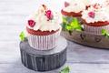 Picture cupcakes, sweet, cream, dessert, decoration rose, cakes