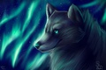 Picture wolf, Northern lights, by SnoSwirl