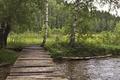 Picture Greens, Nature, Grass, Forest, Nature, Grass, River, Green, Bridge, River, The bridge, Forest