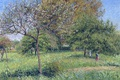 Picture Camille Pissarro, garden, nature, trees, landscape, Walnut Morning in Eragny, picture