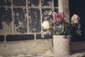 Picture vintage, roses, bouquet, style