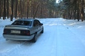 Picture Vectra, vectraa, Opel, trees, winter, forest
